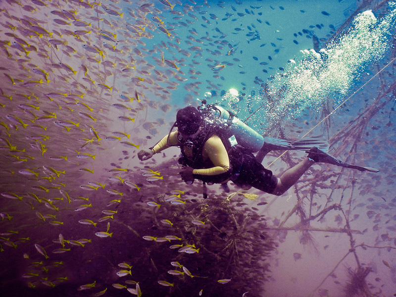 Underwater Scuba Diving in Pondicherry